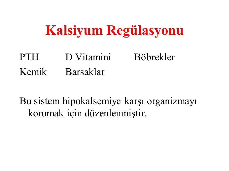 Kalsiyum Regülasyonu PTHD VitaminiBöbrekler KemikBarsaklar Bu sistem hipokalsemiye karşı organizmayı korumak için düzenlenmiştir.