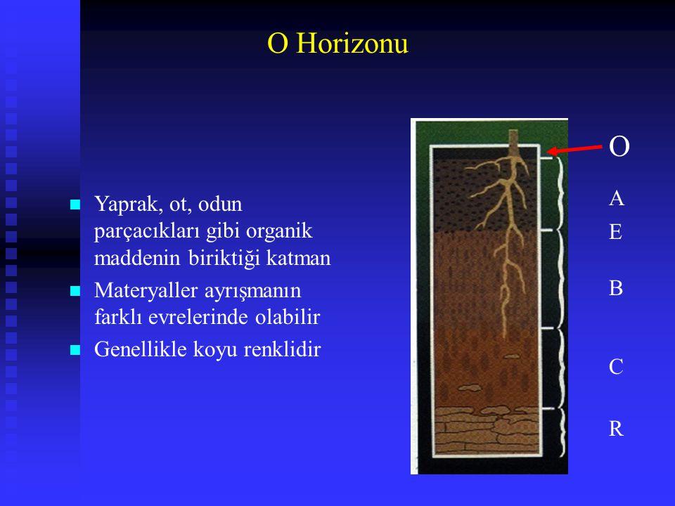 O Horizonu n Yaprak, ot, odun parçacıkları gibi organik maddenin biriktiği katman n Materyaller ayrışmanın farklı evrelerinde olabilir n Genellikle ko