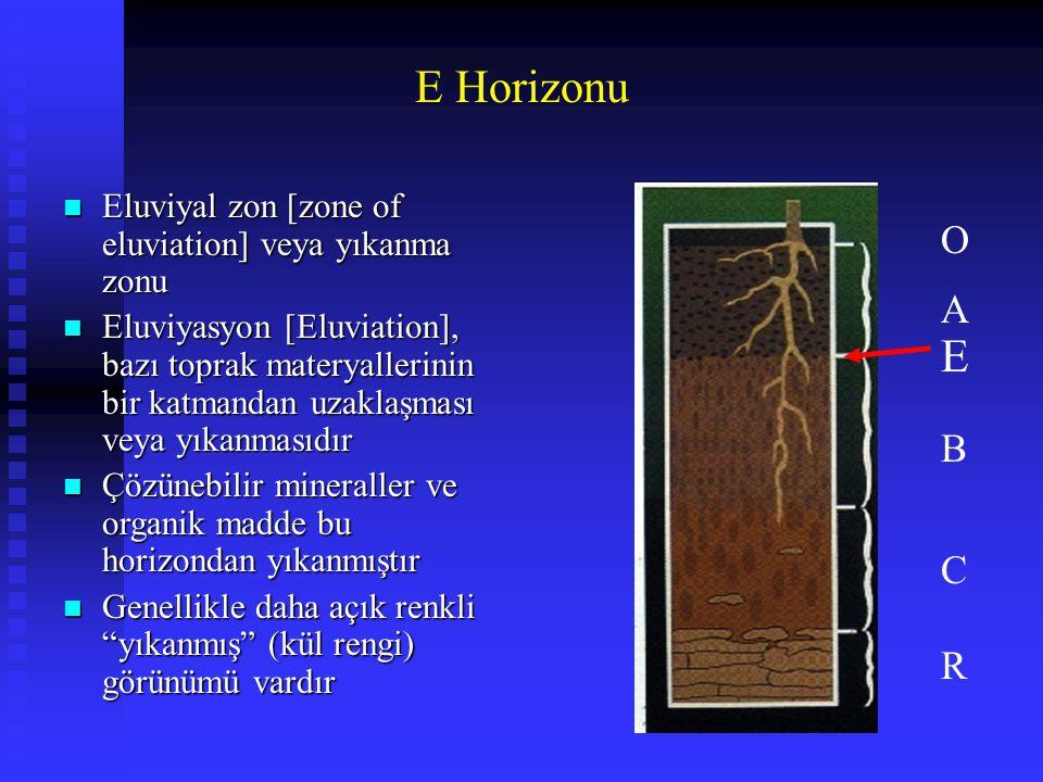 E Horizonu n Eluviyal zon [zone of eluviation] veya yıkanma zonu n Eluviyasyon [Eluviation], bazı toprak materyallerinin bir katmandan uzaklaşması vey