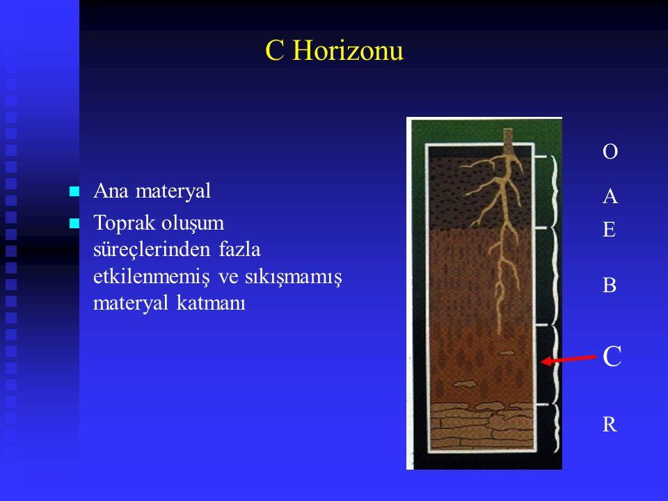 C Horizonu n Ana materyal n Toprak oluşum süreçlerinden fazla etkilenmemiş ve sıkışmamış materyal katmanı A E B C R O