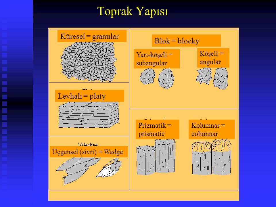 Toprak Yapısı Küresel = granular Levhalı = platy Blok = blocky Yarı-köşeli = subangular Köşeli = angular Prizmatik = prismatic Kolumnar = columnar Üçg