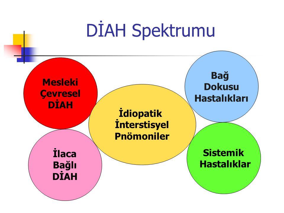 DİAH Spektrumu Mesleki Çevresel DİAH İdiopatik İnterstisyel Pnömoniler İlaca Bağlı DİAH Sistemik Hastalıklar Bağ Dokusu Hastalıkları