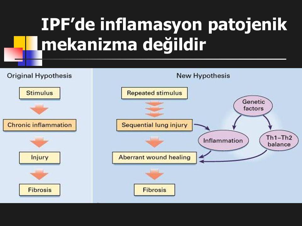 IPF'de inflamasyon patojenik mekanizma değildir