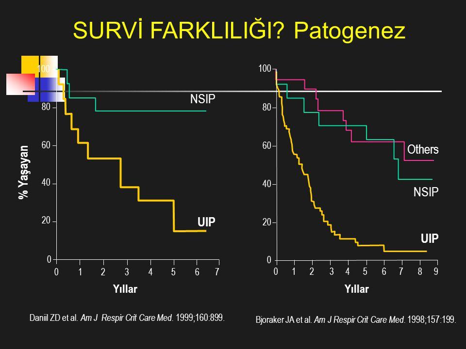 Daniil ZD et al. Am J Respir Crit Care Med. 1999;160:899. Bjoraker JA et al. Am J Respir Crit Care Med. 1998;157:199. Yıllar 76543210 0 20 40 60 80 10