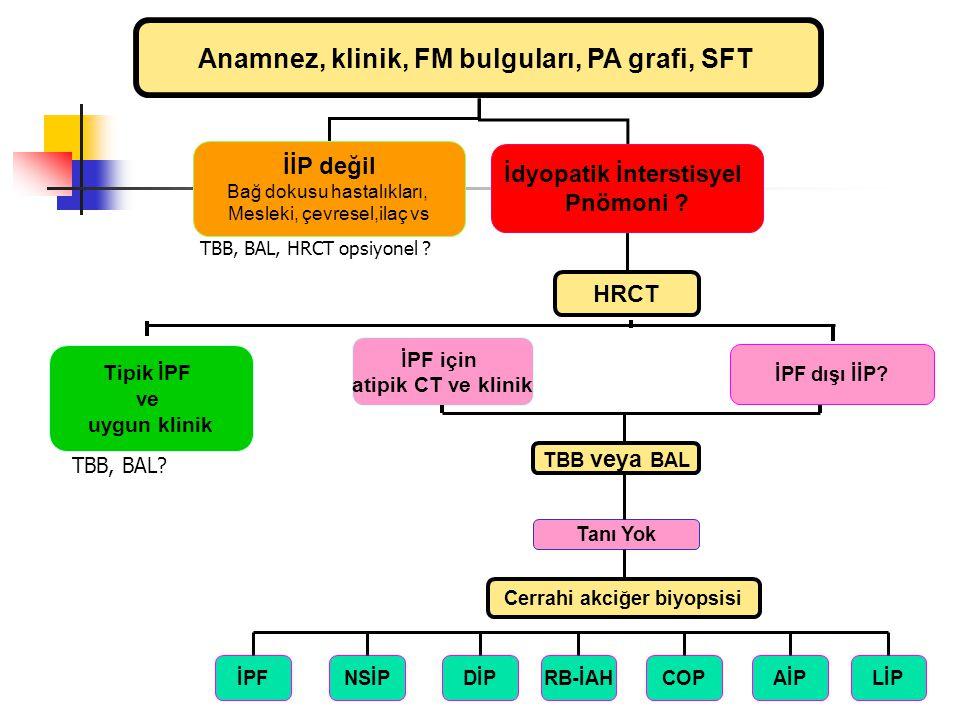İnterstisyel Akciğer Hastalıklarına Yaklaşım Anamnez, klinik, FM bulguları, PA grafi, SFT İİP değil Bağ dokusu hastalıkları, Mesleki, çevresel,ilaç vs