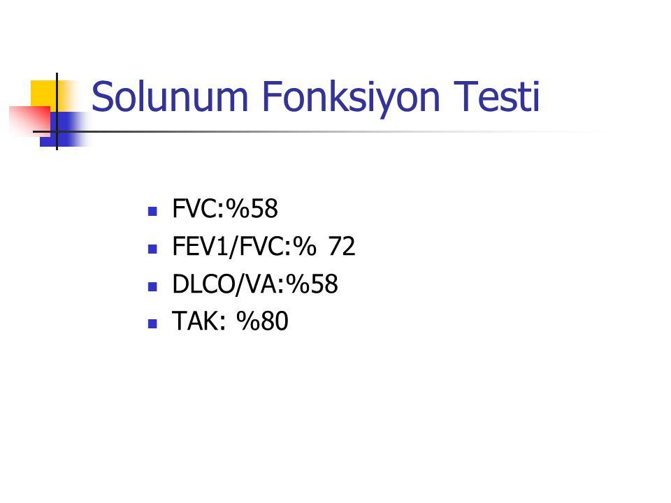 Solunum Fonksiyon Testi FVC:%58 FEV1/FVC:% 72 DLCO/VA:%58 TAK: %80