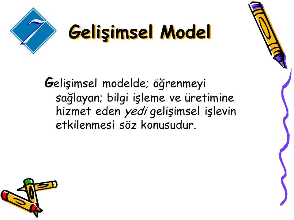 G elişimsel modelde; öğrenmeyi sağlayan; bilgi işleme ve üretimine hizmet eden yedi gelişimsel işlevin etkilenmesi söz konusudur.