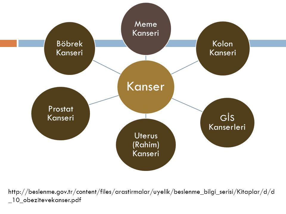 Kanser Meme Kanseri Kolon Kanseri G İ S Kanserleri Uterus (Rahim) Kanseri Prostat Kanseri Böbrek Kanseri http://beslenme.gov.tr/content/files/arastirm
