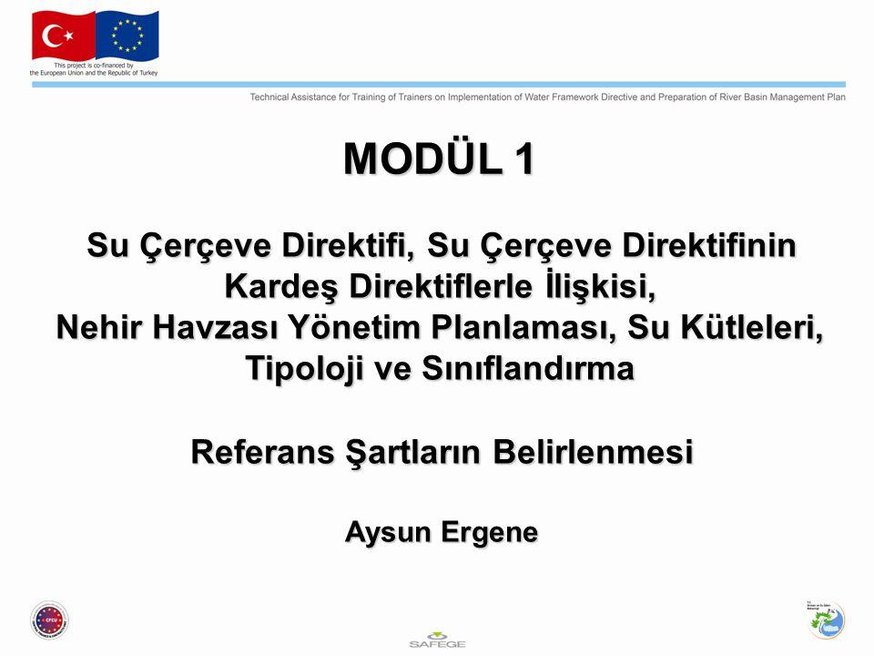 MODÜL 1 Su Çerçeve Direktifi, Su Çerçeve Direktifinin Kardeş Direktiflerle İlişkisi, Nehir Havzası Yönetim Planlaması, Su Kütleleri, Tipoloji ve Sınıflandırma Referans Şartların Belirlenmesi Aysun Ergene