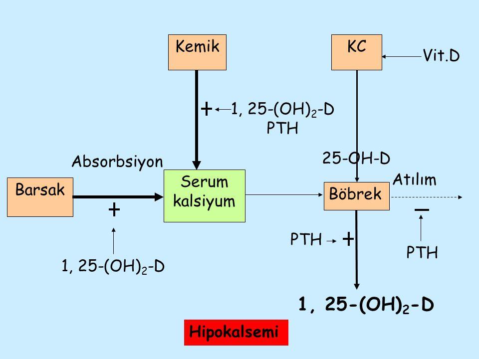 Atılım Absorbsiyon Barsak Serum kalsiyum Böbrek KC Vit.D 25-OH-D Kemik 1, 25-(OH) 2 -D PTH 1, 25-(OH) 2 -D PTH Hipokalsemi
