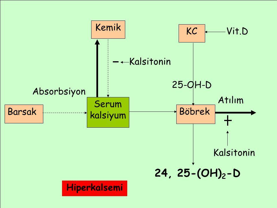 Atılım Absorbsiyon Barsak Serum kalsiyum Böbrek KC Vit.D 25-OH-D Kemik 24, 25-(OH) 2 -D Kalsitonin Hiperkalsemi