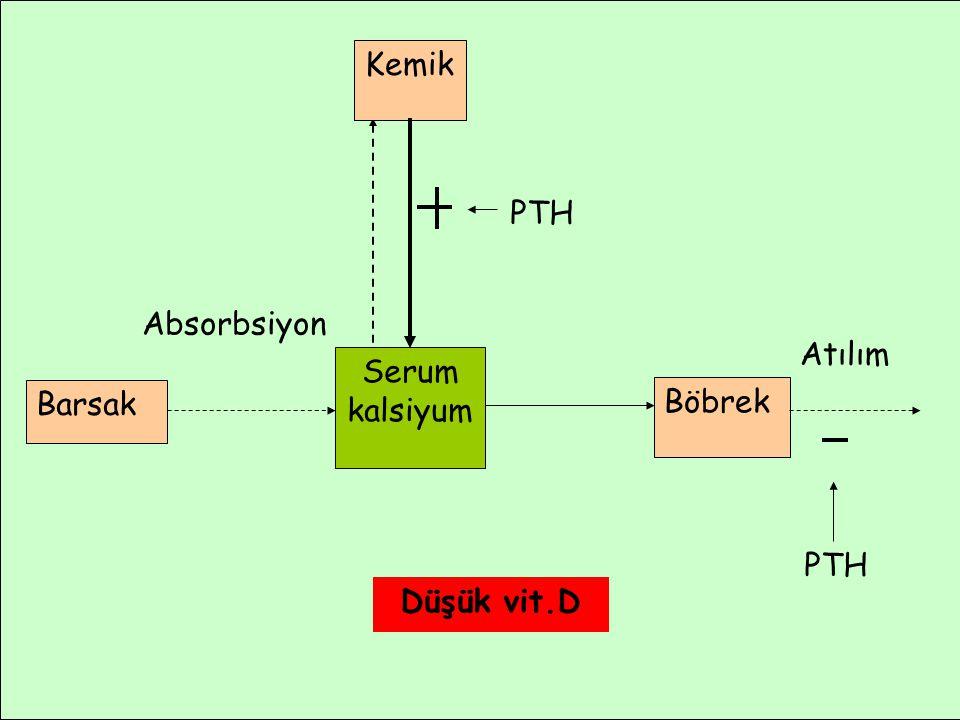 Atılım Absorbsiyon Barsak Serum kalsiyum Böbrek Kemik PTH Düşük vit.D