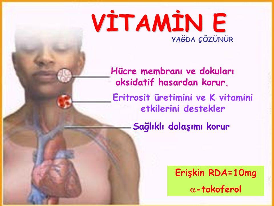 VİTAMİN E Hücre membranı ve dokuları oksidatif hasardan korur. Eritrosit üretimini ve K vitamini etkilerini destekler Sağlıklı dolaşımı korur Erişkin