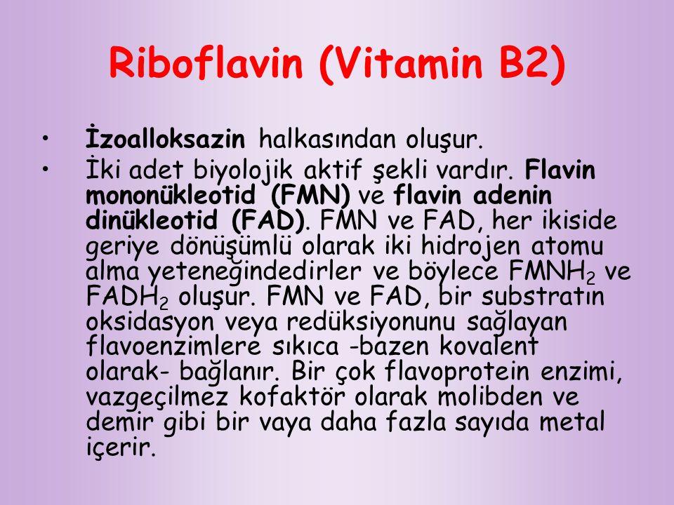 Riboflavin (Vitamin B2) İzoalloksazin halkasından oluşur. İki adet biyolojik aktif şekli vardır. Flavin mononükleotid (FMN) ve flavin adenin dinükleot