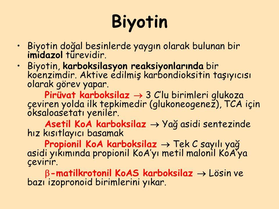 Biyotin Biyotin doğal besinlerde yaygın olarak bulunan bir imidazol türevidir. Biyotin, karboksilasyon reaksiyonlarında bir koenzimdir. Aktive edilmiş