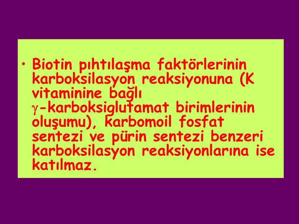 Biotin pıhtılaşma faktörlerinin karboksilasyon reaksiyonuna (K vitaminine bağlı  -karboksiglutamat birimlerinin oluşumu), karbomoil fosfat sentezi ve