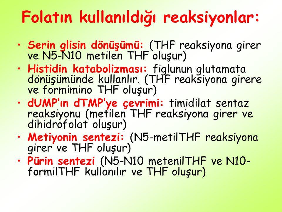 Folatın kullanıldığı reaksiyonlar: Serin glisin dönüşümü: (THF reaksiyona girer ve N5-N10 metilen THF oluşur) Histidin katabolizması: figlunun glutama