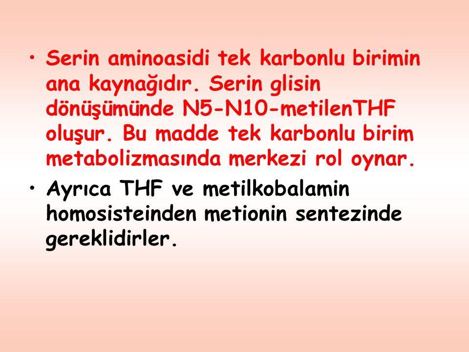 Serin aminoasidi tek karbonlu birimin ana kaynağıdır. Serin glisin dönüşümünde N5-N10-metilenTHF oluşur. Bu madde tek karbonlu birim metabolizmasında