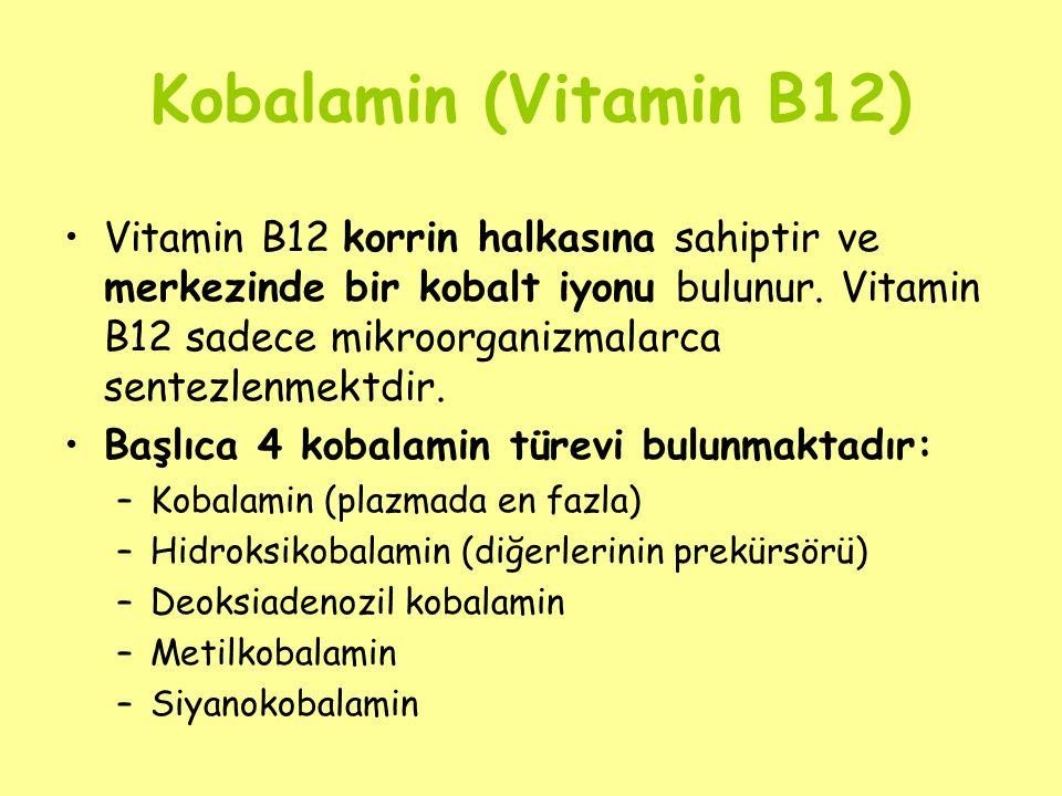 Kobalamin (Vitamin B12) Vitamin B12 korrin halkasına sahiptir ve merkezinde bir kobalt iyonu bulunur. Vitamin B12 sadece mikroorganizmalarca sentezlen