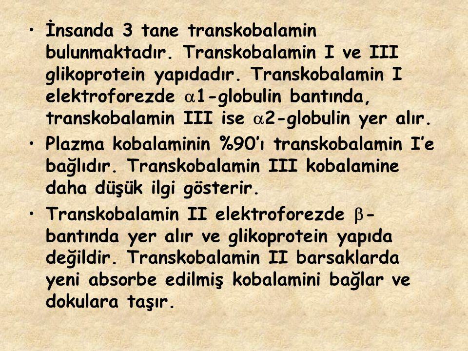 İnsanda 3 tane transkobalamin bulunmaktadır. Transkobalamin I ve III glikoprotein yapıdadır. Transkobalamin I elektroforezde  1-globulin bantında, tr