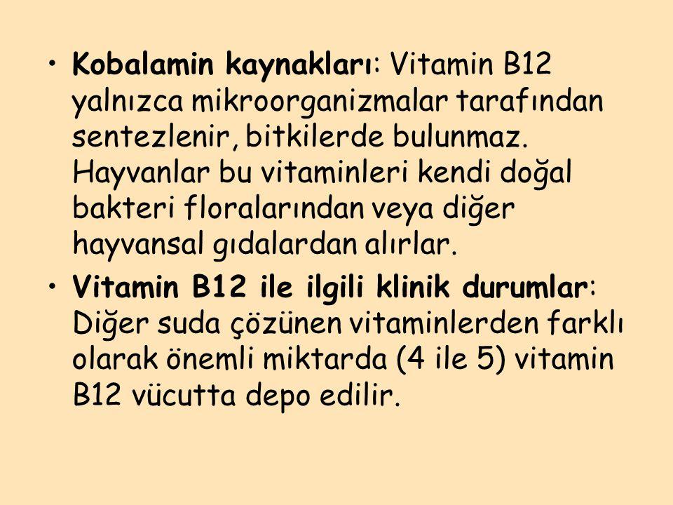 Kobalamin kaynakları: Vitamin B12 yalnızca mikroorganizmalar tarafından sentezlenir, bitkilerde bulunmaz. Hayvanlar bu vitaminleri kendi doğal bakteri