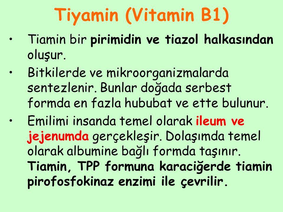 Tiyamin (Vitamin B1) Tiamin bir pirimidin ve tiazol halkasından oluşur. Bitkilerde ve mikroorganizmalarda sentezlenir. Bunlar doğada serbest formda en