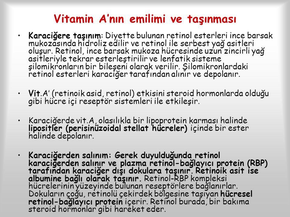 Vitamin A'nın emilimi ve taşınması Karaciğere taşınım: Diyette bulunan retinol esterleri ince barsak mukozasında hidroliz edilir ve retinol ile serbes