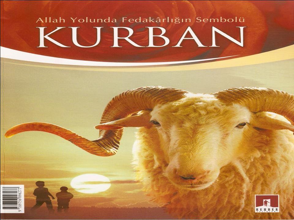 Kurban; ibadet maksadıyla belirli bir zamanda, belirli şartları taşıyan bir hayvanı usûlüne göre Allah rızası için kesmek demektir.