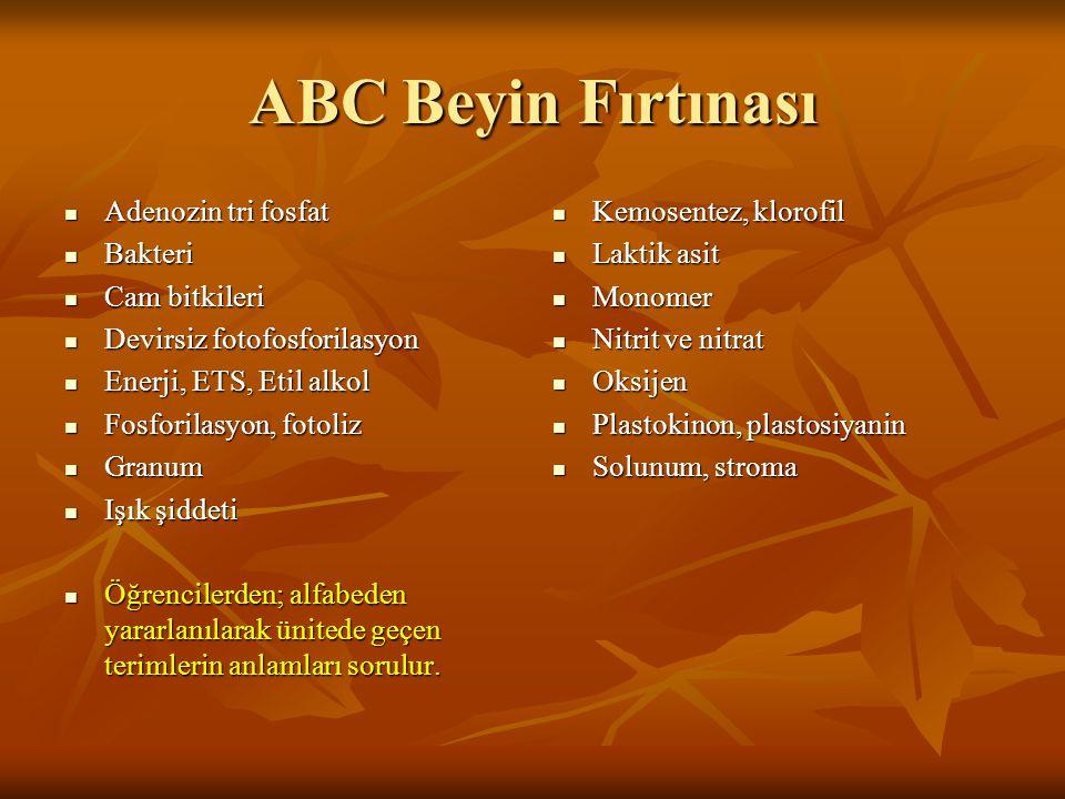 ABC Beyin Fırtınası Adenozin tri fosfat Adenozin tri fosfat Bakteri Bakteri Cam bitkileri Cam bitkileri Devirsiz fotofosforilasyon Devirsiz fotofosfor
