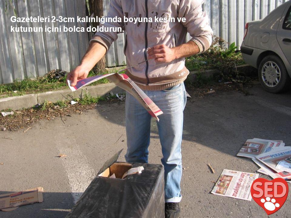 Gazeteleri 2-3cm kalınlığında boyuna kesin ve kutunun içini bolca doldurun.