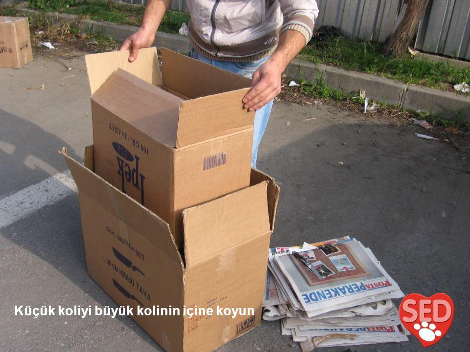 Gazeteleri katlanmış olarak iki kutu arasına dört tarafına sıkıca yerleştirin