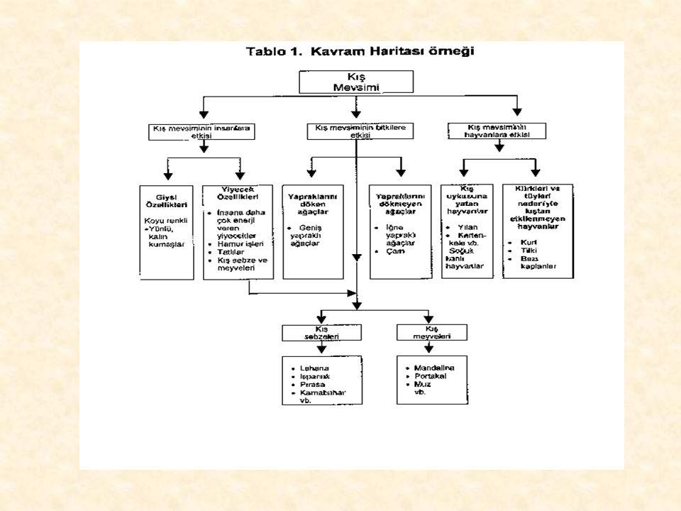 """Örneğin; somut kavramlardan soyut kavramlara doğru ilerlemeyi sağlayan hiyerarşik bir biçimde örgütlenen """"kavram şemaları (haritaları)"""" bilginin anlam"""