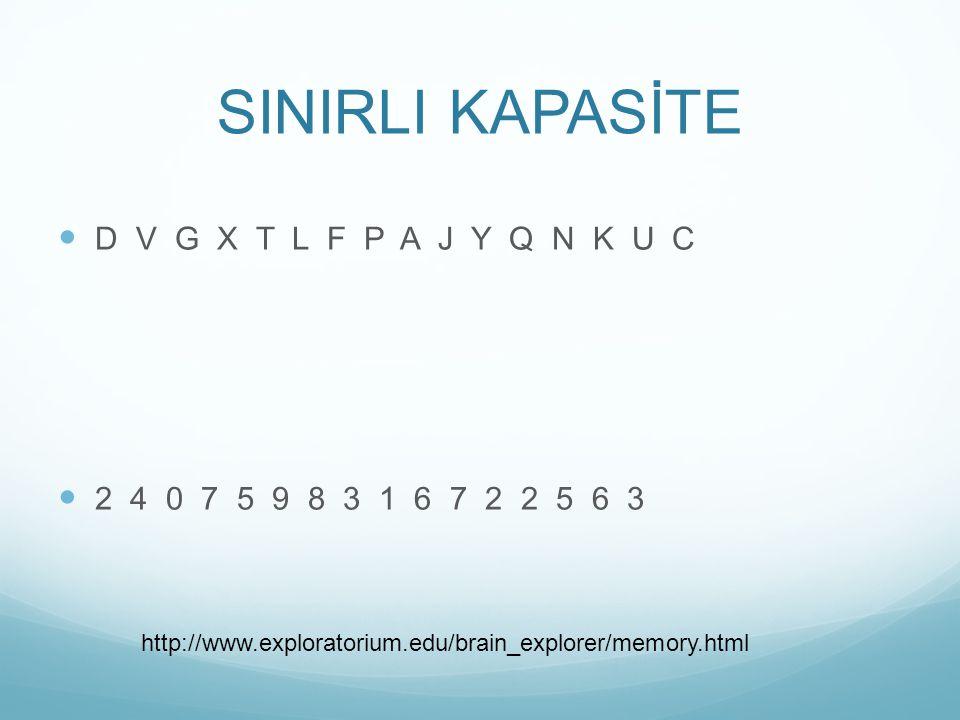 D V G X T L F P A J Y Q N K U C 2 4 0 7 5 9 8 3 1 6 7 2 2 5 6 3 http://www.exploratorium.edu/brain_explorer/memory.html