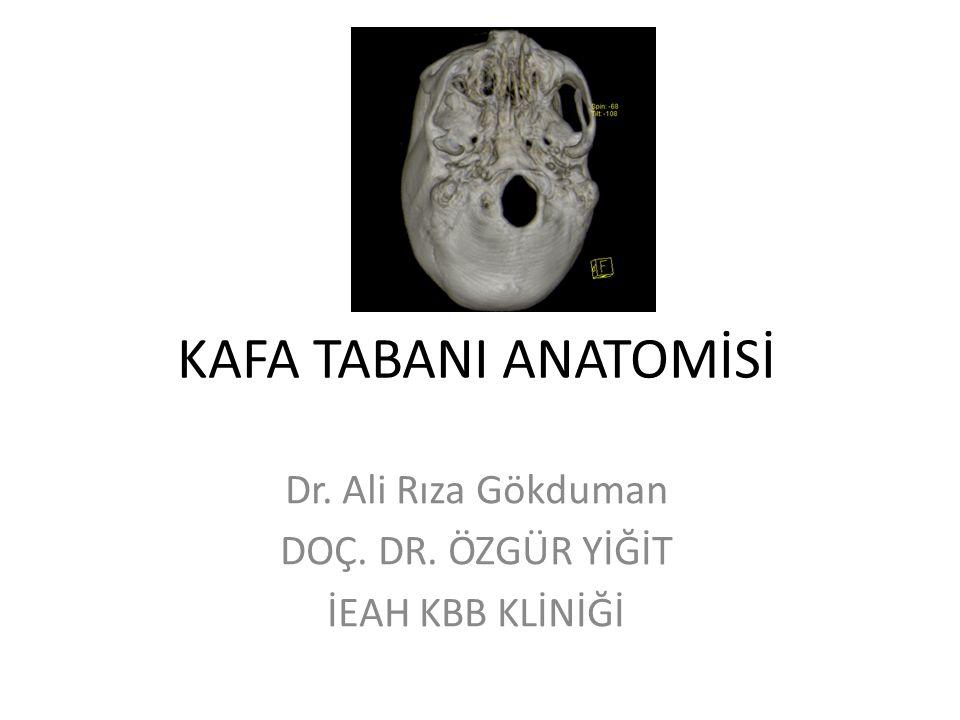 ORTA KAFA TABANI Nörovasküler: – Juguler foramen » Fibröz duranın iki tranvers septası ile ön, orta ve arka bölümlere ayrılır.