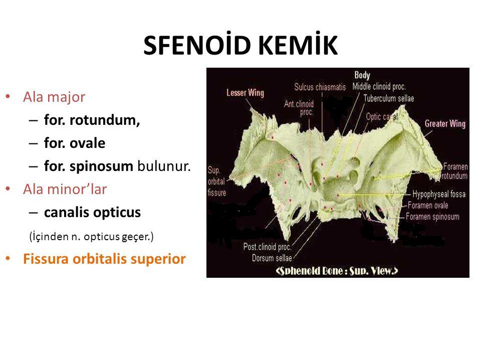 YAKLAŞIMLAR A-ÖN KAFA TABANI YAKLAŞIMLARI – Lateral rinotomi veya degloving tekniği – Kraniyofasiyal rezeksiyon veya transfrontal sinüs yaklaşımı – Geniş subfrontal yaklaşım – Osteoplastik frontal sinüs cerrahisi