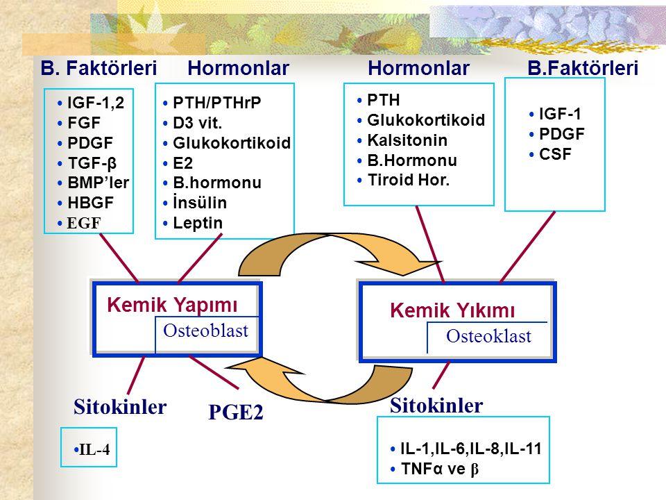 IGF-1,2 FGF PDGF TGF-β BMP'ler HBGF EGF B.