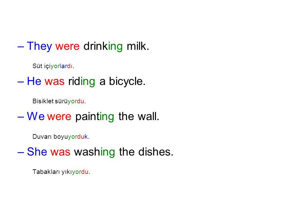 –They were drinking milk. Süt içiyorlardı. –He was riding a bicycle. Bisiklet sürüyordu. –We were painting the wall. Duvarı boyuyorduk. –She was washi
