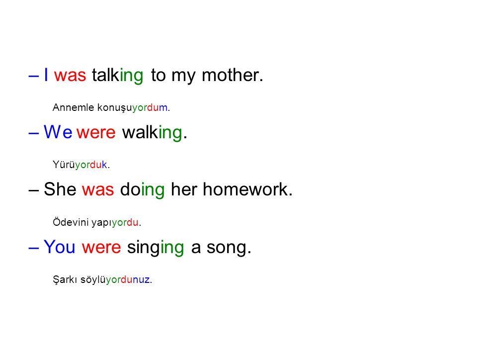 –I–I was talking to my mother. Annemle konuşuyordum. –W–We were walking. Yürüyorduk. –S–She was doing her homework. Ödevini yapıyordu. –Y–You were sin