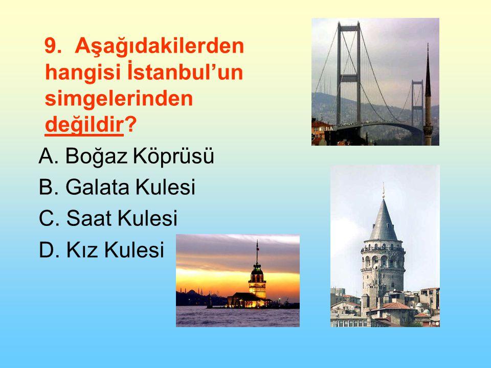 9.Aşağıdakilerden hangisi İstanbul'un simgelerinden değildir.