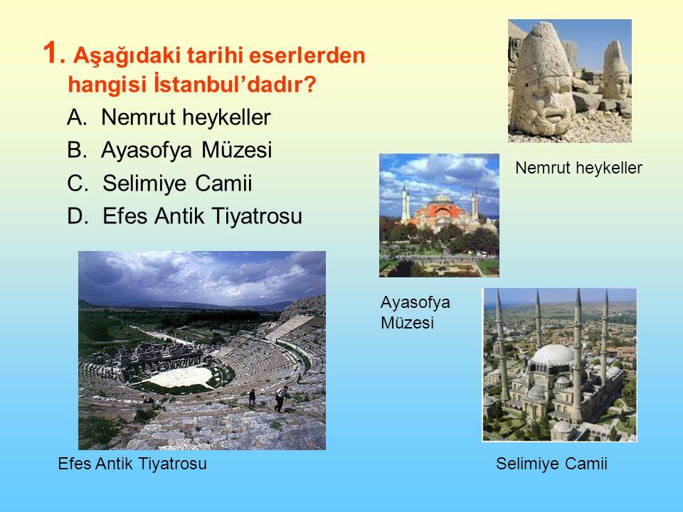 1.Aşağıdaki tarihi eserlerden hangisi İstanbul'dadır.
