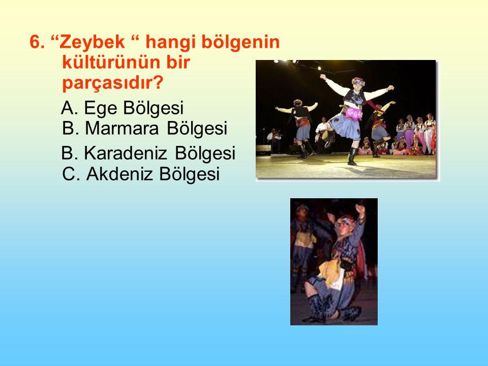 6. Zeybek hangi bölgenin kültürünün bir parçasıdır.