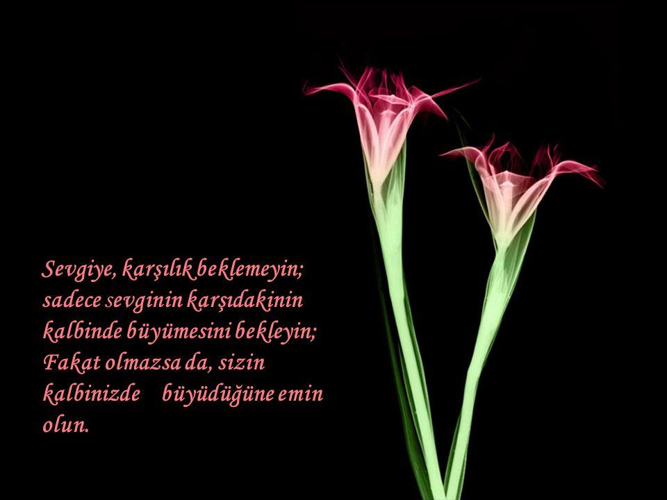 Birine çarpılmak için bir an yeterlidir, Birinden hoşlanmak bir saat, ve birini sevmek içinde bir gün yeterlidir, ama birini unutmak ise bir ömür sürer.