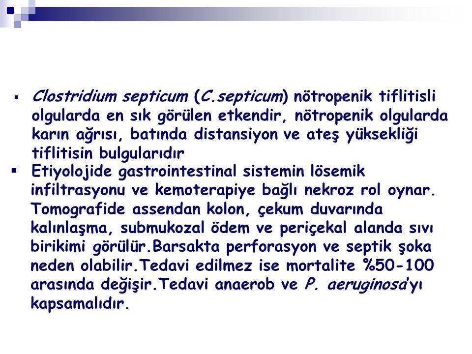  Clostridium septicum (C.septicum) nötropenik tiflitisli olgularda en sık görülen etkendir, nötropenik olgularda karın ağrısı, batında distansiyon ve