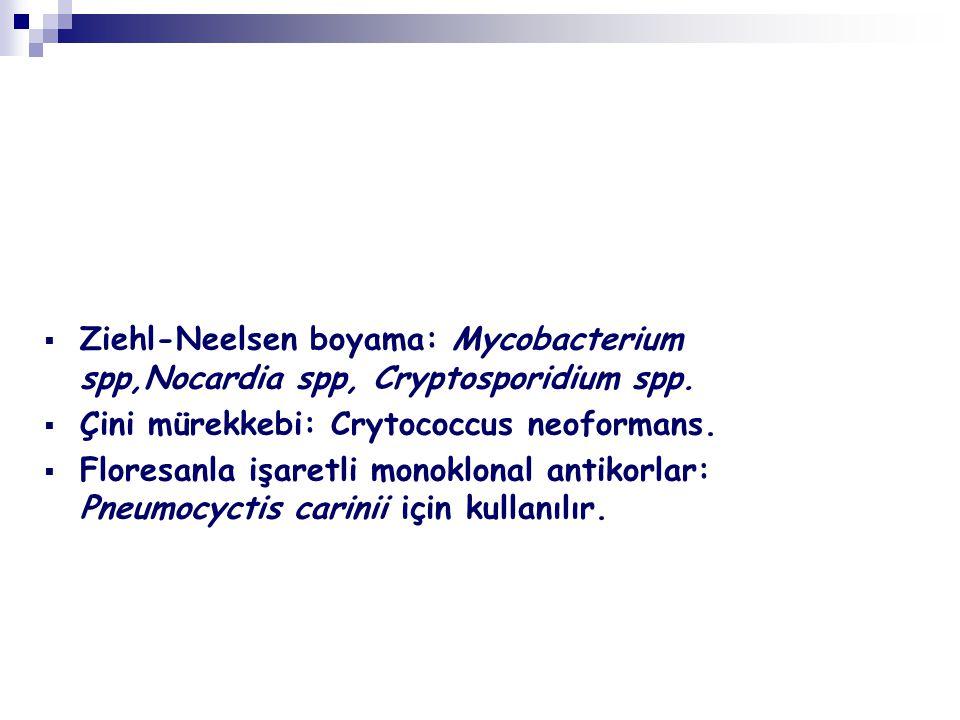  Ziehl-Neelsen boyama: Mycobacterium spp,Nocardia spp, Cryptosporidium spp.  Çini mürekkebi: Crytococcus neoformans.  Floresanla işaretli monoklona