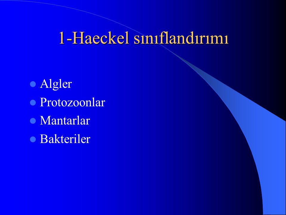 1-Haeckel sınıflandırımı Algler Protozoonlar Mantarlar Bakteriler