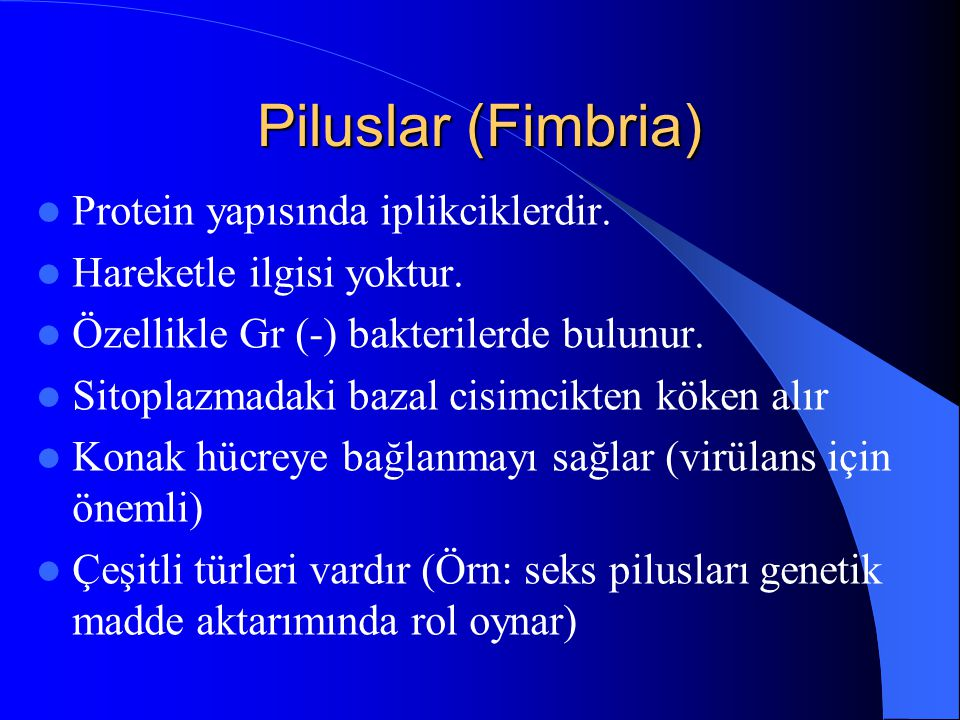 Piluslar (Fimbria) Protein yapısında iplikciklerdir. Hareketle ilgisi yoktur. Özellikle Gr (-) bakterilerde bulunur. Sitoplazmadaki bazal cisimcikten