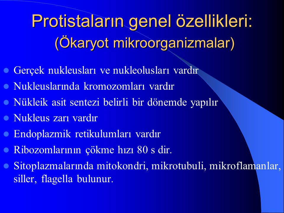 Protistaların genel özellikleri: (Ökaryot mikroorganizmalar) Gerçek nukleusları ve nukleolusları vardır Nukleuslarında kromozomları vardır Nükleik asi