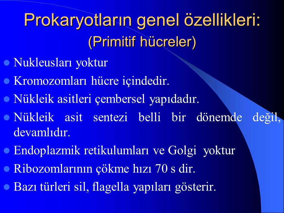 Prokaryotların genel özellikleri: (Primitif hücreler) Nukleusları yoktur Kromozomları hücre içindedir. Nükleik asitleri çembersel yapıdadır. Nükleik a
