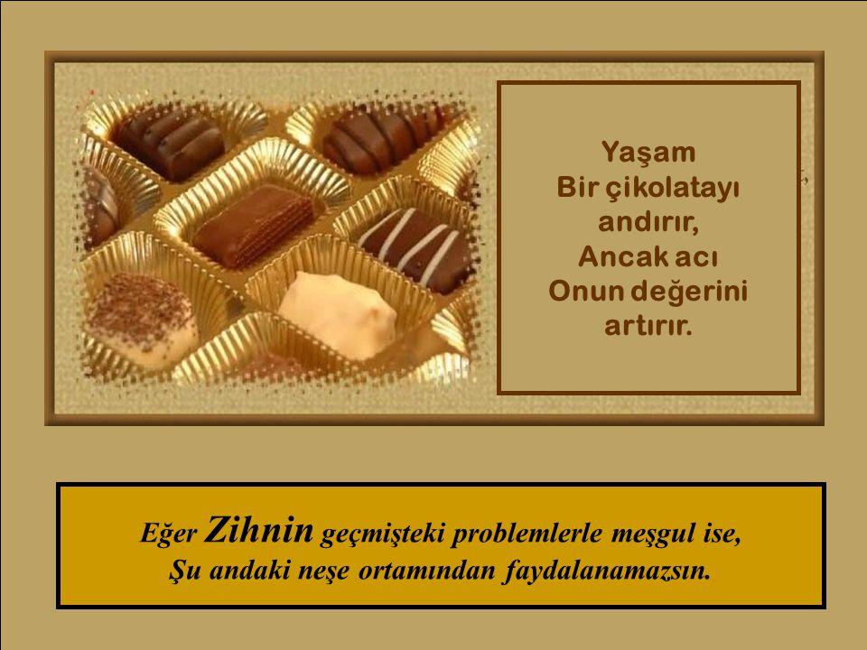 Ya ş am Bir çikolatayı andırır, Ancak acı Onun de ğ erini artırır.