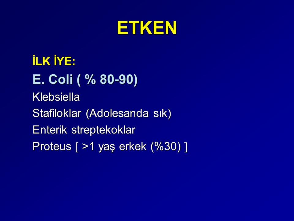 ETKEN İLK İYE: E. Coli ( % 80-90) Klebsiella Stafiloklar (Adolesanda sık) Enterik streptekoklar Proteus  >1 yaş erkek (%30) 